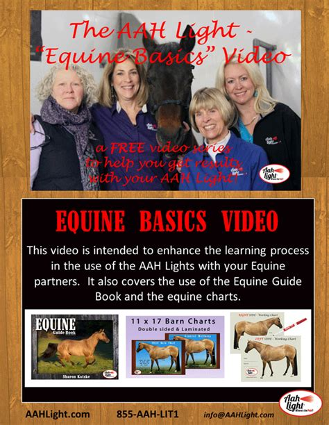 aah light for sale the quot equine basics quot free series
