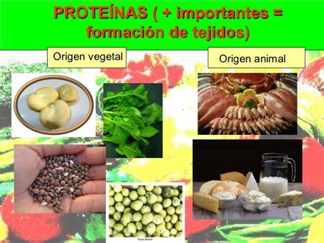 proteinas y minerales los alimentos vitaminas y minerales