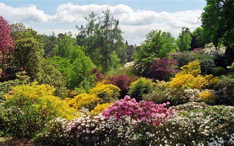 leonardslee gardens west sussex uk landscape garden vi