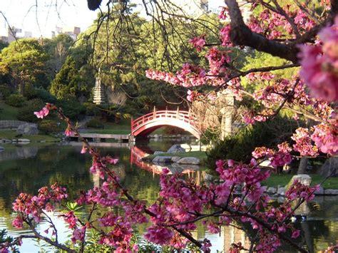 imagenes de jardines orientales cerezos en flor jardin japones centro kyushu terapias