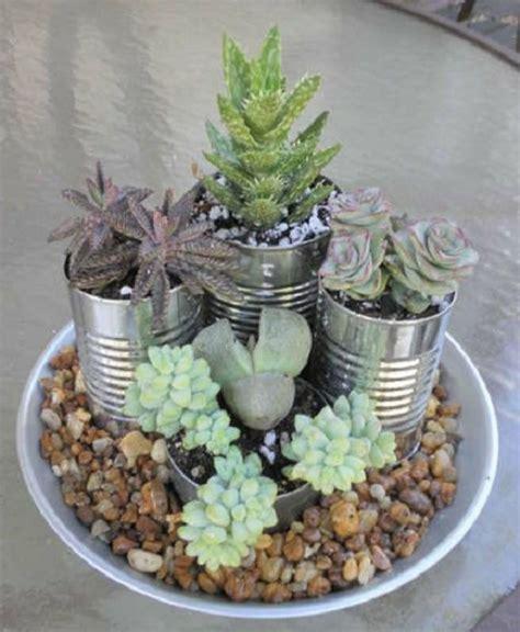 decorar con plantas suculentas decorar con plantas suculentas jardiner 205 a pinterest