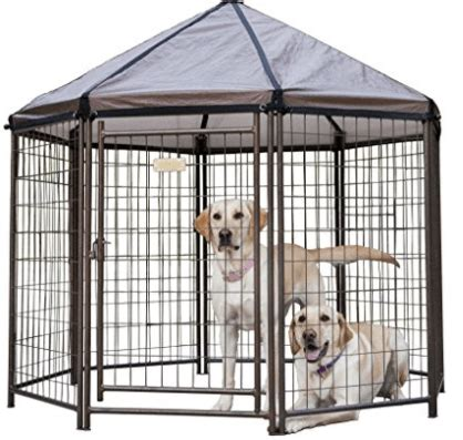 outdoor dog kennel reviews buyers guide