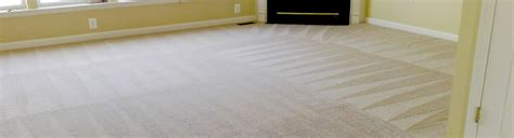 dallas rug cleaning dallas carpet cleaner we steam clean carpets in dallas highland park park dfw