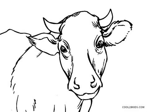 cow coloring pages free printable cow coloring pages for cool2bkids