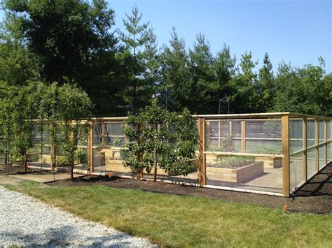 Vegetable Garden Fence Ideas Vegetable Garden Fence Fenced Garden Pinterest