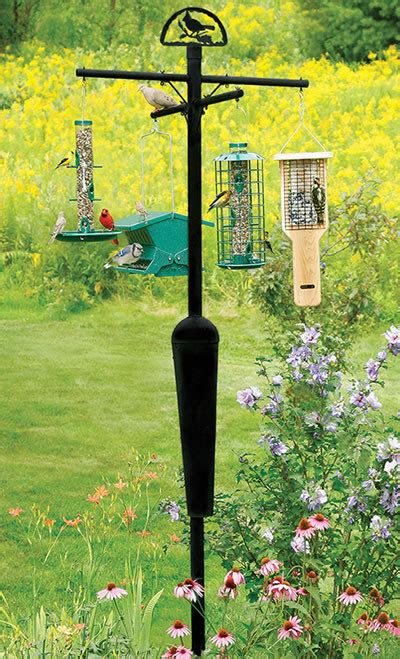 squirrel stopper pole and baffle system holds 8 bird
