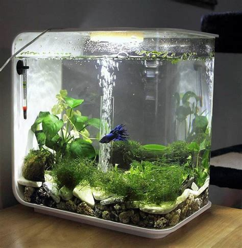Aga Aquascaping Id 233 Es Et Astuces Comment Cr 233 Er Un Nano Aquarium