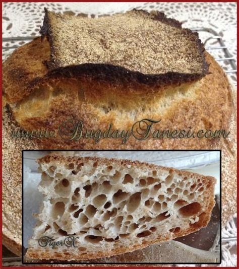 100 hydration dough 100 hydration bread by whole wheat flour the fresh loaf