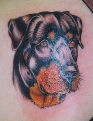 animal tattoo dog cute animal tattoo designs