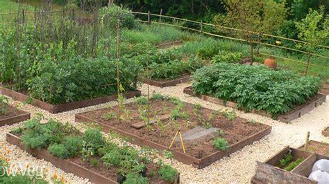permaculture vegetable garden layout garden clean up saturday magazine the guardian nigeria