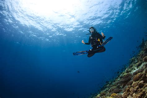 stock ladari 7 reasons to be thankful you re a diver the dive bible