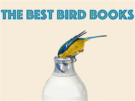 bird picture books the best books about or featuring birds book scrolling