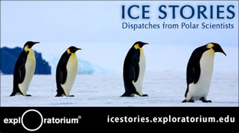 little ice ice stories dispatches from polar scientists blogs stories htm