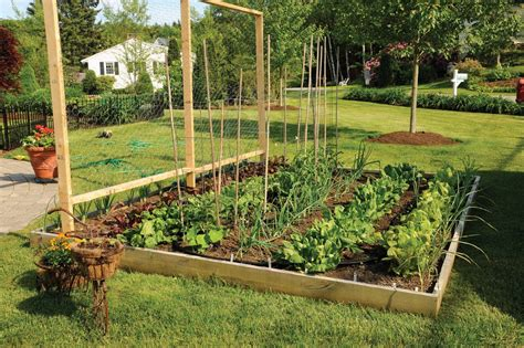 12 Pictures To Start Vegetable Gardening In A Raised Bed How To Make A Raised Vegetable Garden Bed