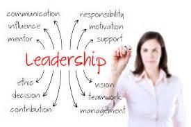 msn nursing leadership personal statement nursing