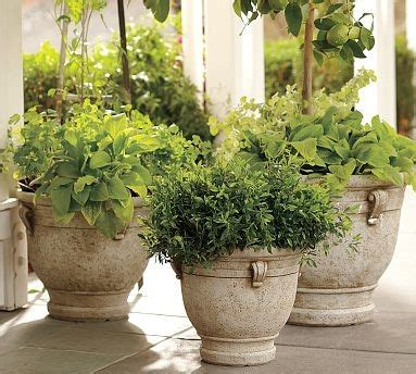 cast planter large traditional indoor