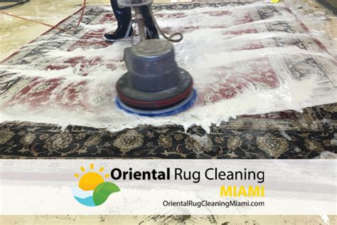 rug cleaning miami rug cleaning miami roselawnlutheran