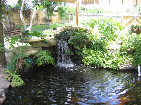 pond backyard fantastic waterfall and natural plants around pool like