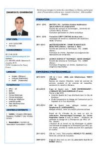 Cv Pros cv pro zakaria el gharbaoui delegue