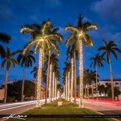 royal palm tree christmas lights palm beach island