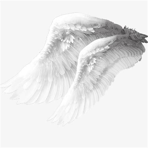 rescate en white angel 天使翅膀素材图片免费下载 高清装饰图案png 千库网 图片编号7418815
