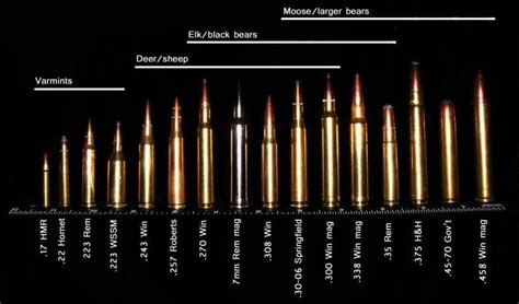 pistol bullet caliber sizes chart rifle bullet caliber size chart pictures to pin on