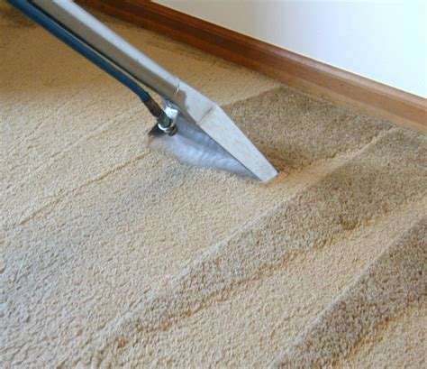 how to deep clean your carpet hirerush blog how to clean carpet at home hirerush blog