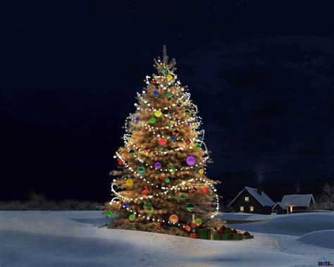 christmas tree desktop wallpapers wallpaper cave