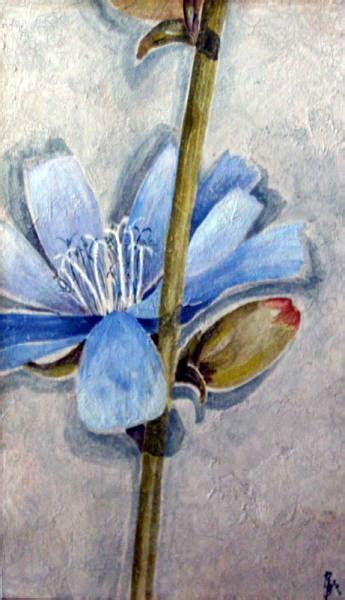 costo dei fiori di bach fiori di bach istruzioni per l uso