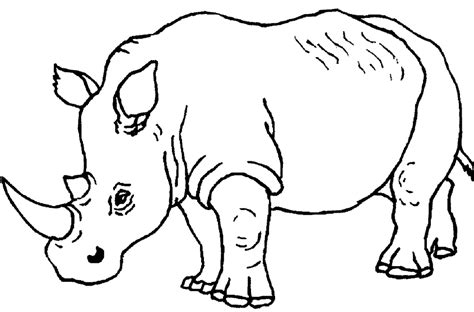 coloring pages rhino free coloring pages of de un rinoceronte