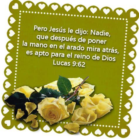 imagenes hermosas con versiculos versiculos biblicos flores