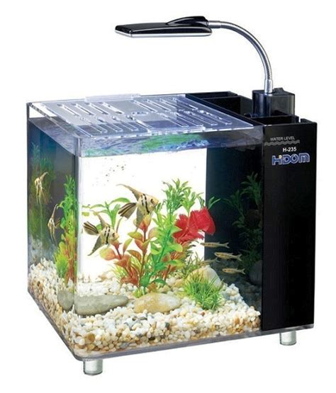 betta fish tank light small glass betta aquariums fish tank with light art