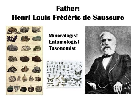 biography of ferdinand de saussure ferdinand de saussure the father of linguistics
