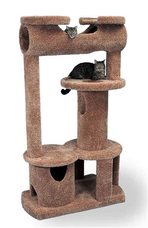 biggest house cat you can buy introducing the buckingham palace kitty mansion the official coolkittycondos