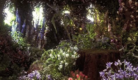 beautiful garden movie flowers forest gif flowers forest nature gifs say more