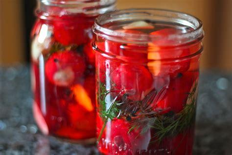 pickled radishes make and use yankee kitchen ninja