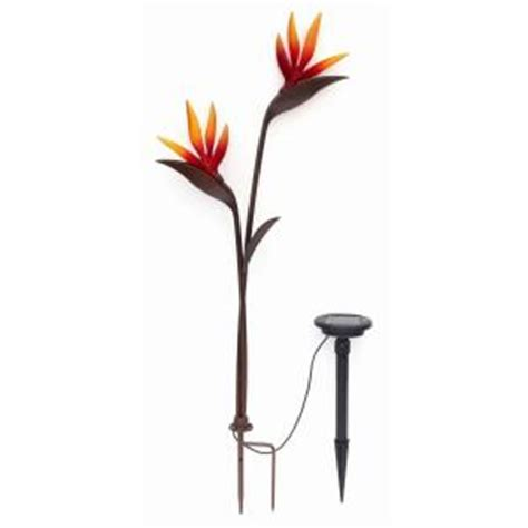 trendscape solar lights trendscape bird of paradise led bronze solar