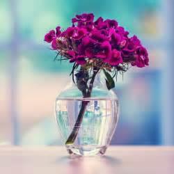Purple Flower Vase Purple Flowers Bouquet In Vase Background Wallpaper I Hd