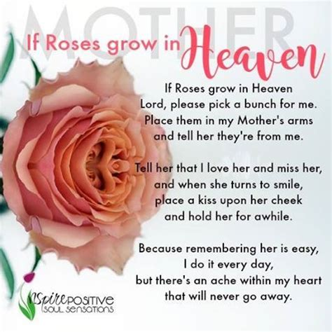 lessons from loved ones in heaven how to connect with your loved one on the other side to heal from loss books if roses grow in heaven them for my pictures