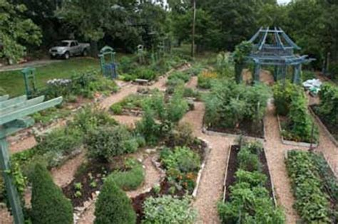 using cedar mulch in vegetable garden jim s garden wood chips are they for your garden