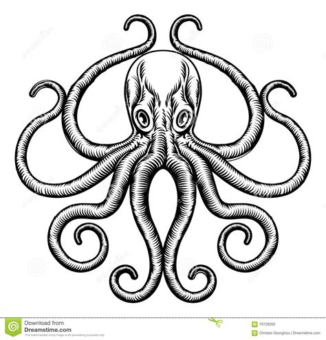 octopus or squid illustration stock vector illustration
