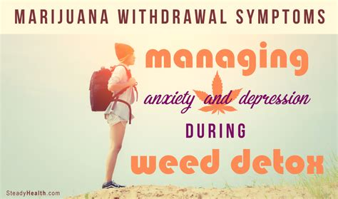 Cannabis Detox Symptoms by Marijuana Withdrawal Symptoms Managing Anxiety And