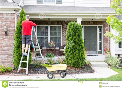 around the house yard work around the house trimming thuja trees stock photo image 54569532