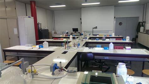 scienze biologiche pavia lbs galleria dipartimento di biologia e biotecnologie quot l