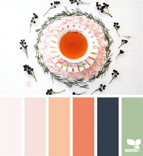 color sip design seeds bloglovin