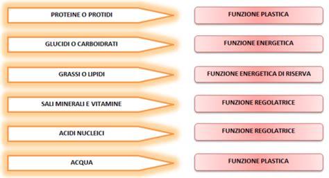 principi nutritivi degli alimenti energia benvenuti su nutrizioneok
