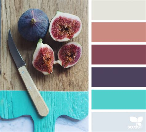 design seeds instagram fresh hues design seeds