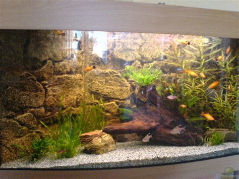 bd becken exle no 5168 from the category community tanks