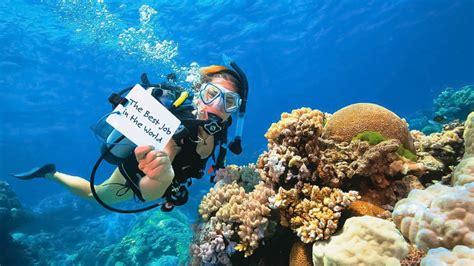 padi dive master divemaster course phuket thailand padi pro courses