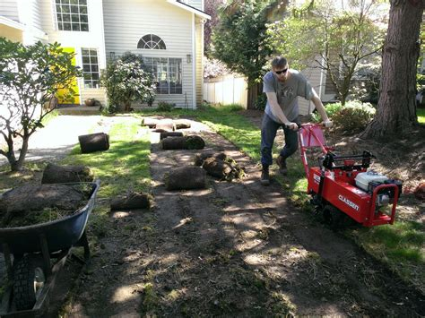 top 28 lawn replacement cost lawn replacement landscape resource alternatives to grass in